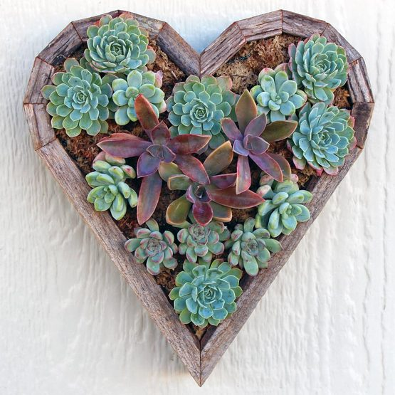 vertical_planter_heart_planted__39558.1413563070.555.555
